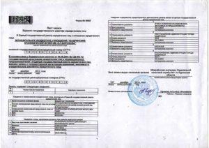 Свидетельство о государственной регистрации и свидетельство о внесении в егрюл в чем разница