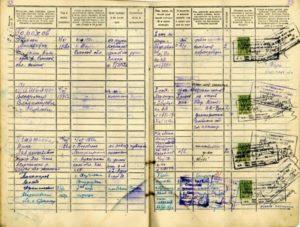 Где хранятся данные из домовых книг