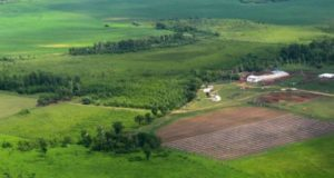 Как Получить Земельный Участок В Крыму Бесплатно 2020