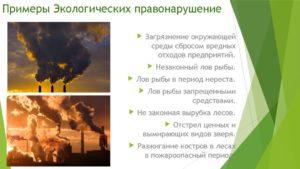 Экологические преступления примеры