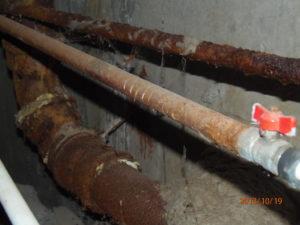 Батарея в подвале многоквартирного дома