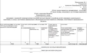 Бланк отчета о готовом расходование денежных средств в органы опеки г зарайска