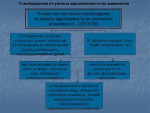 Как расчитать госпошлину при освобождении от уплаты алиментов