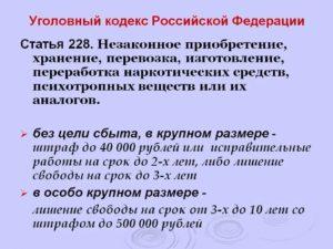228 5 статья уголовного кодекса