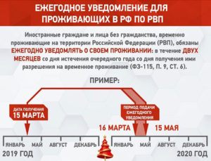 Правила пребывания иностранных граждан на территории рф в 2020 году