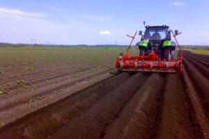Сколько стоит вспахать 1 га земли трактором