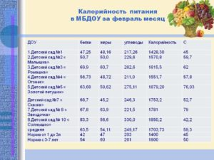 Сколько платят за питание в детском саду в москве