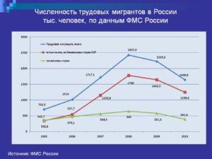 Что сколько трудовых мигрантов в россии