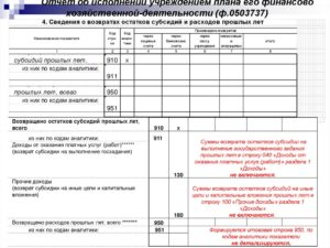 Возврат субсидий на выполнение государственного задания в бюджет
