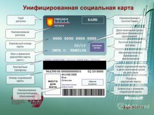 Социальная Карта Москвича Серия И Номер Где Смотреть