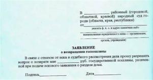 Возврат госпошлины при отказе от иска в арбитражном суде образец заявления