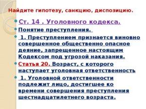 Статьи Уголовного Кодекса Гипотезы