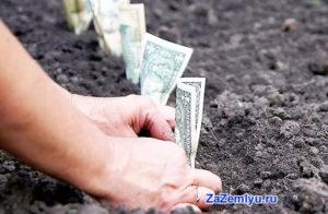 Сколько выплаты с аренды владельцу земельного пая крым